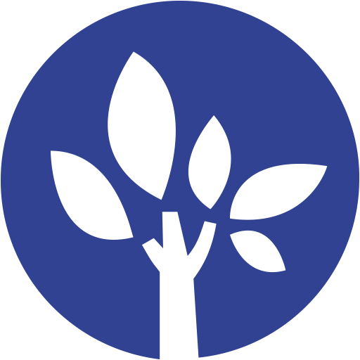 Academia Lesson - Logo